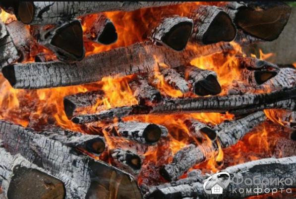 На каких дровах можно жарить шашлык